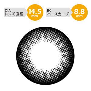 [度あり]QuoRe ナチュラシリーズ ベーシックブラック (DIA 14.5mm)