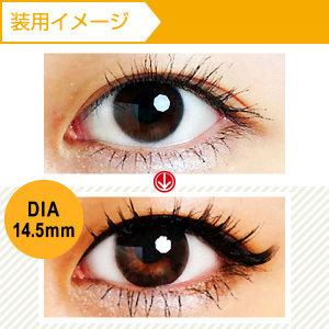 [度あり]QuoRe ナチュラシリーズ ブラウンブラック (DIA 14.5mm)